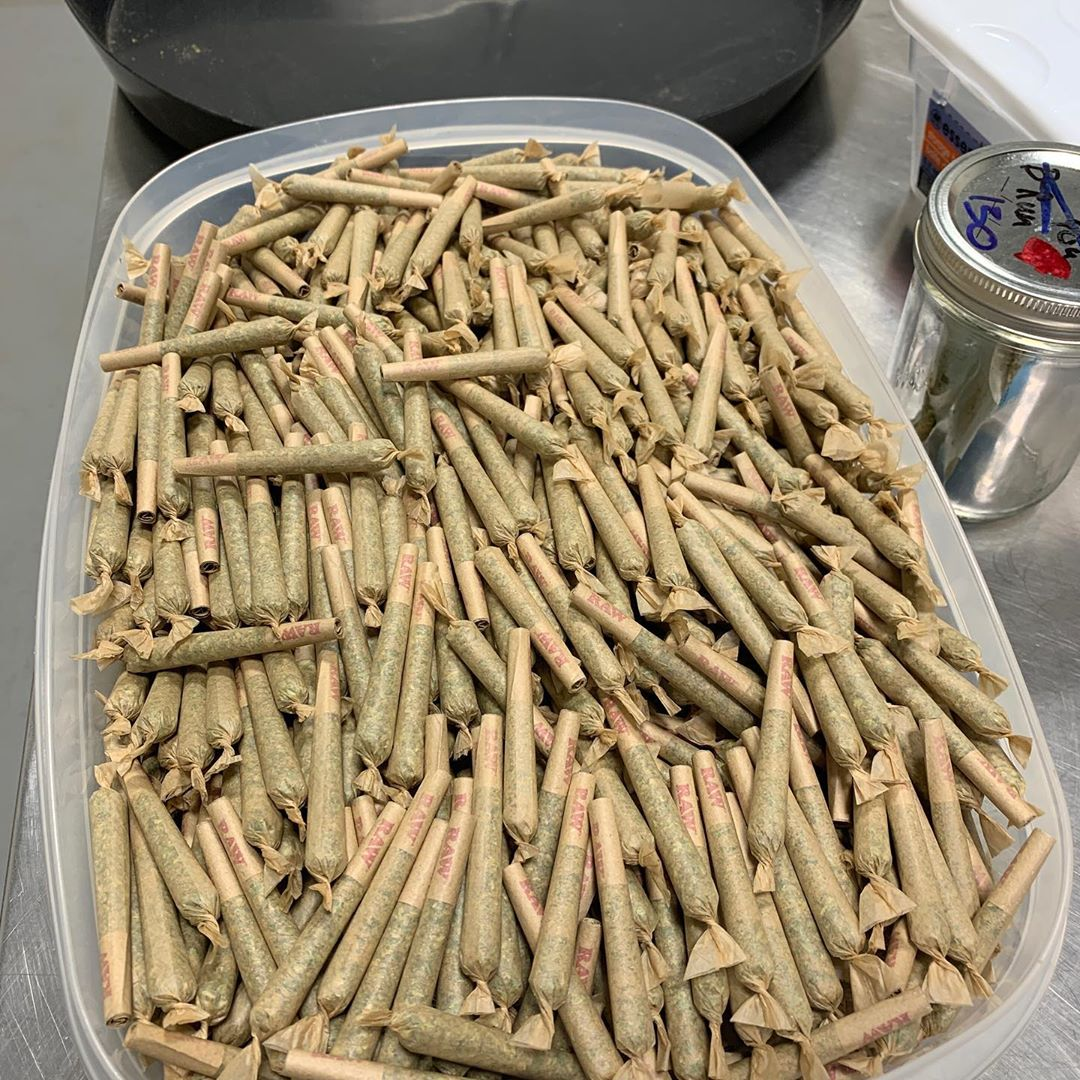 1,000 .5 gram solventless infused pre rolls distributed through olcc no sales do…